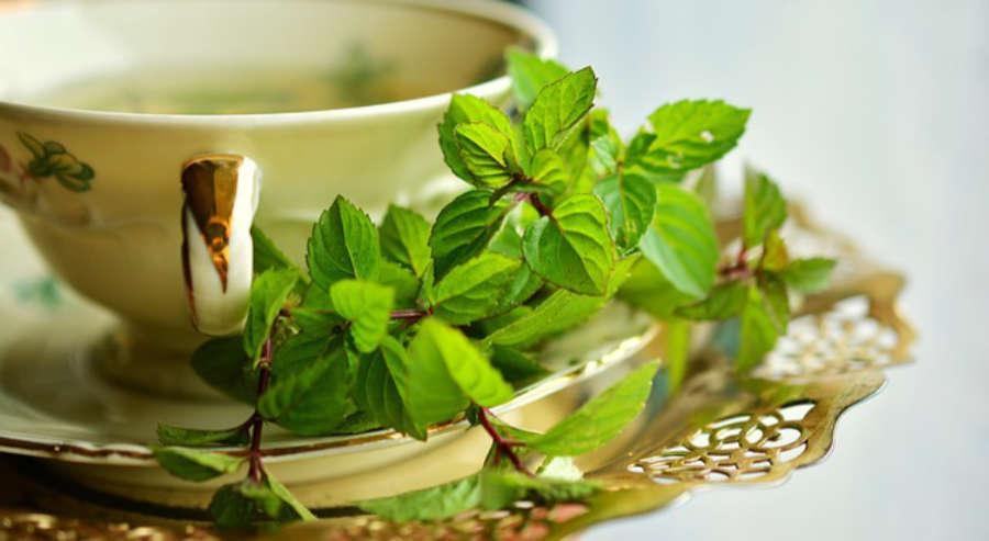 A zöld tea csodája!